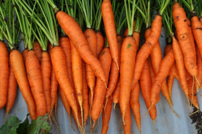 В каких овощах содержится крахмал