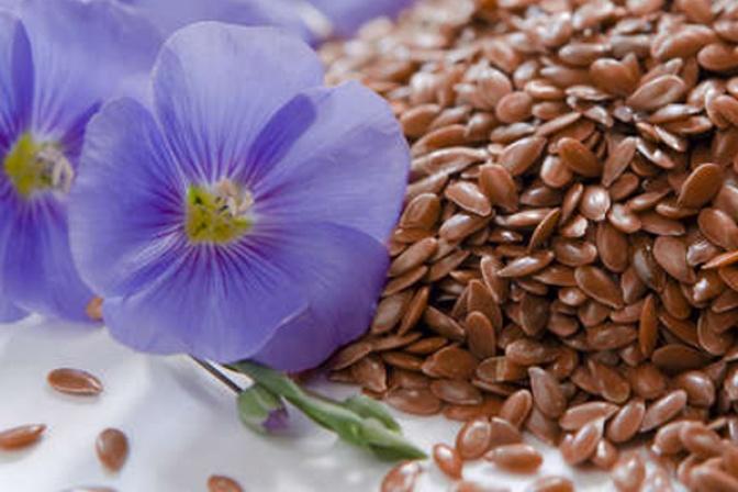 Семена льна как лекарство